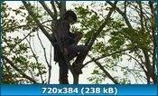 Одиночка / Kamui gaiden (2009) HDRip