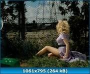 http://s5.directupload.net/images/110223/adjllxoc.jpg